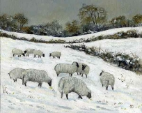 <strong>Sheep in snow' Henley I</strong>