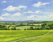 <strong>View near Fawley</strong>