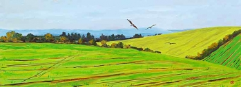 <strong>Kites over the Ridgeway</strong>