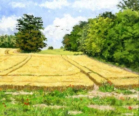 Happy Valley Cornfield' Henley