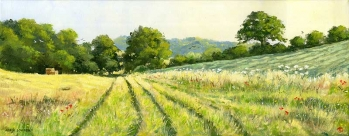 Happy Valley Summer Evening' Henley