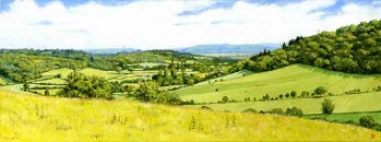 Turville Valley' Summer