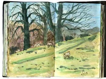 sketchbook-a015